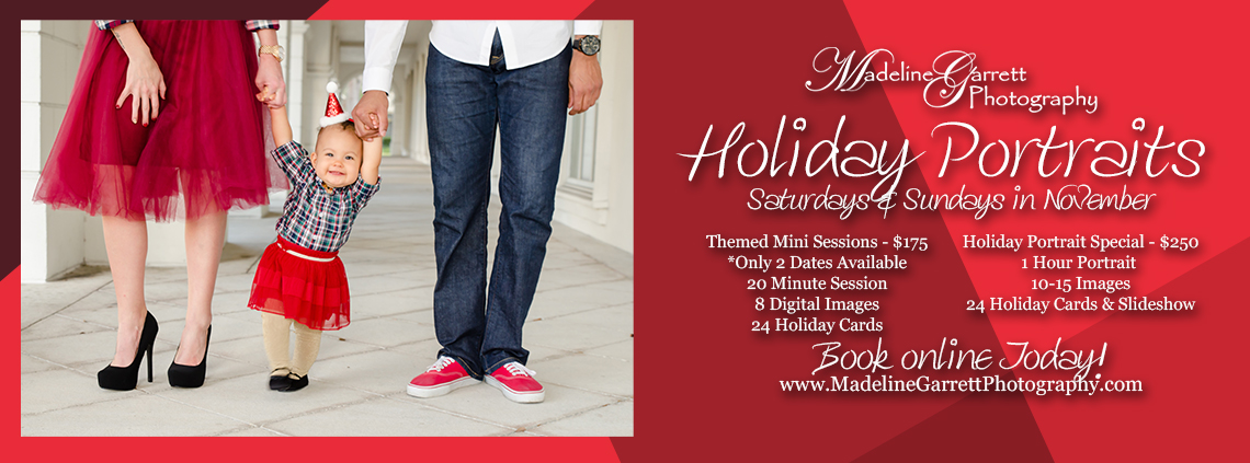 2017 Holiday Portraits Website Banner